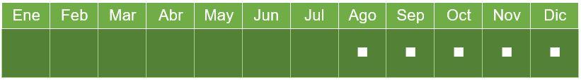 calendario_mango