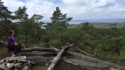 View over Singlefjorden