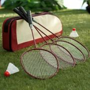 Halex Badminton Set