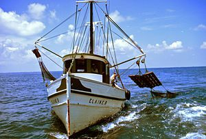 This small shrimp trawler uses outriggers, wit...