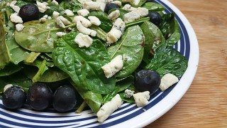Blueberry Blue Cheese Salad with Blueberry Vinaigrette