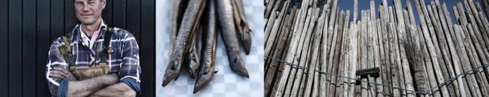 FKF_105_ILL_visser-paling-hout11