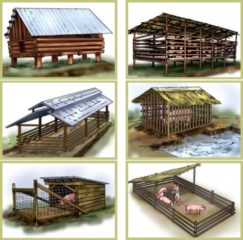 Different models/types of pig house/sheds.