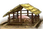 Breeding boars Pigsty Building