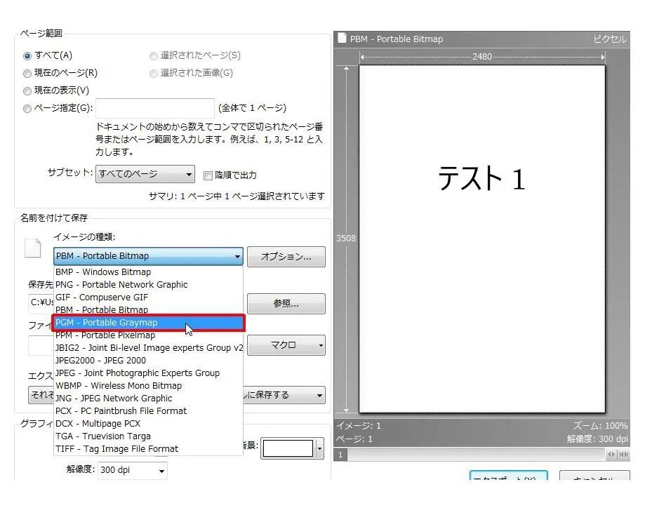 [名前を付けて保存] グループの [イメージの種類] コンボ ボックスリストの [PGM - Portable Graymap] をクリックします。