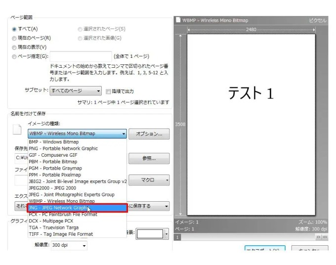 [名前を付けて保存] グループの [イメージの種類] コンボ ボックスリストの [JNG - JPEG Network Graphic] をクリックします。