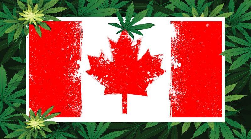 DMG Cannabis