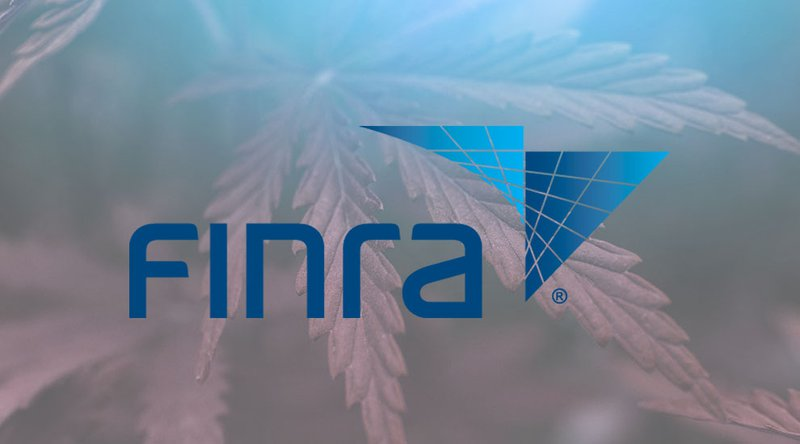 A New Precedent: FINRA Charges Crypto Founder With Securities Fraud