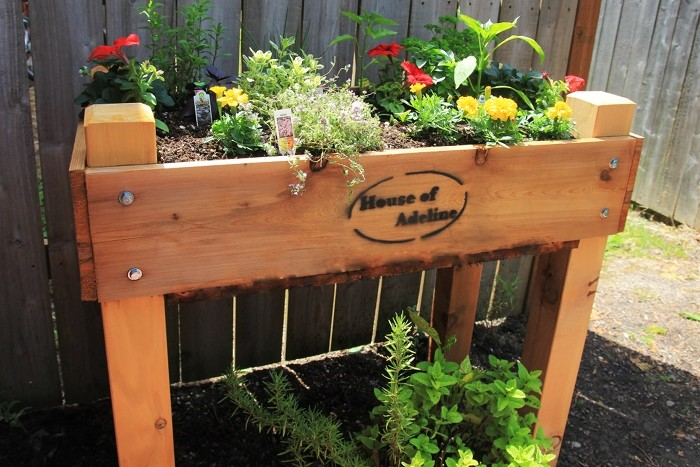 Raised Vegetable Garden Lowes