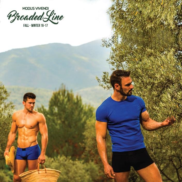Modus Vivendi - New Release - Broaded Line