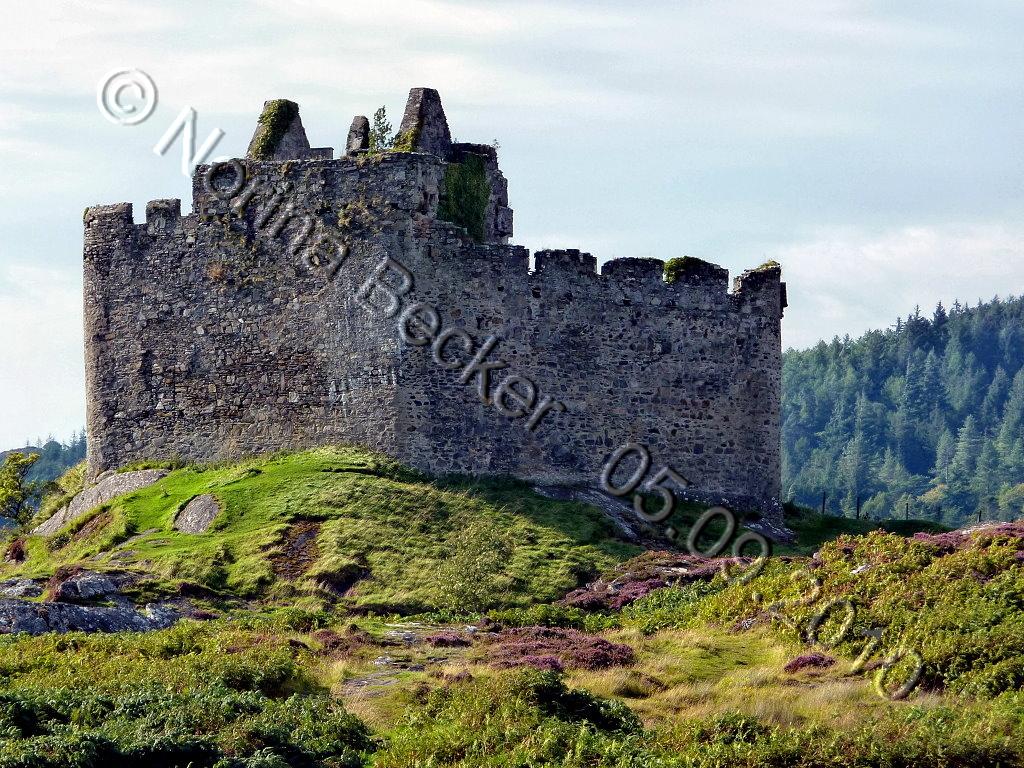Castle Tioram 201003