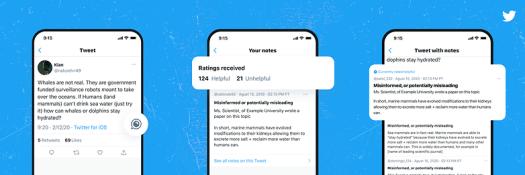 Twitter Birdwatch overview