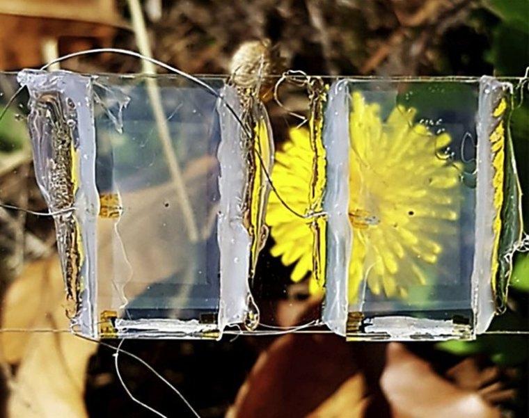 transparentes Solarpanel