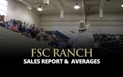 Extra Effort Sale Report