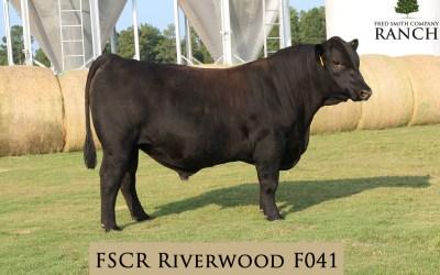 FSCR Riverwood F041 in the Fall Sale!