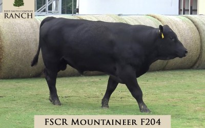 FSCR MOUNTAINEER F204 in the 2020 Fall Sale!