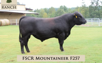 FSCR MOUNTAINEER F257 in the 2020 Fall Sale!
