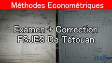 Méthodes économetriques