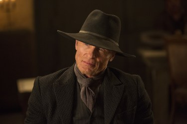 William Is the Man in Black in 'Westworld,' Finale Reveals ...