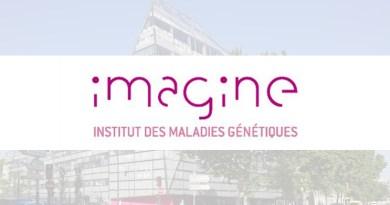 [offre déjà pourvue] Offre emploi Ingénieur d'Études iPS chez Institut Imagine