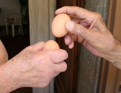 Eggs ticking !