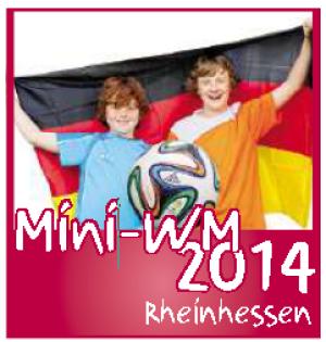 MiniWM2014