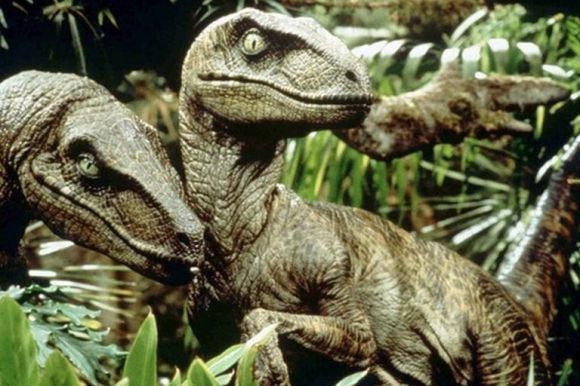 Learn 10 Velociraptor Facts