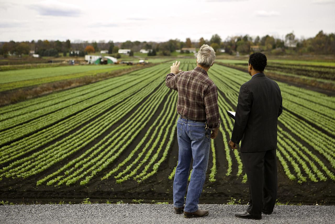 How To Write A Small Farm Business Plan