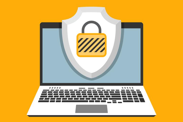 Best Web Protection Program