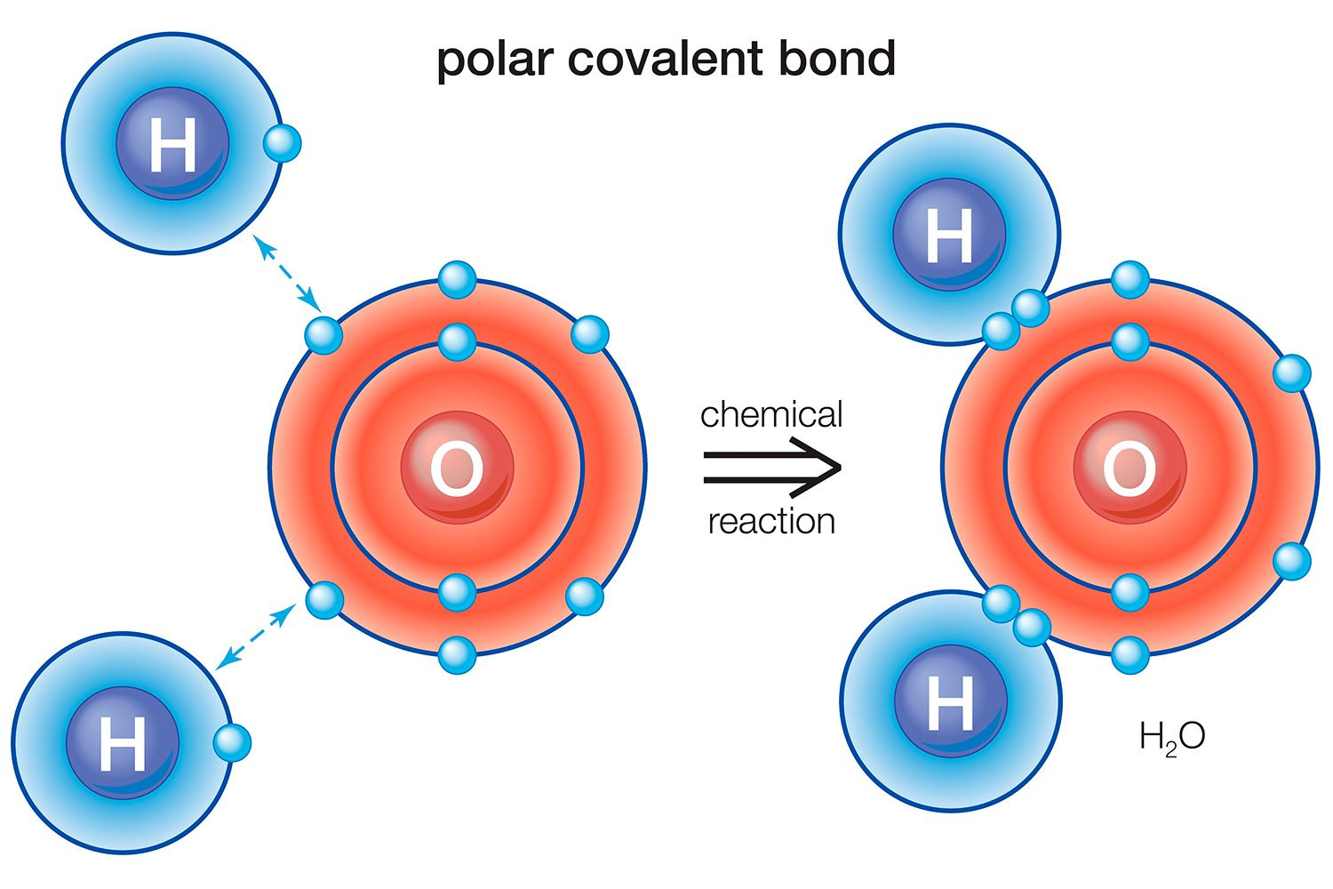 What Is A Polar Bond Definition And Examples
