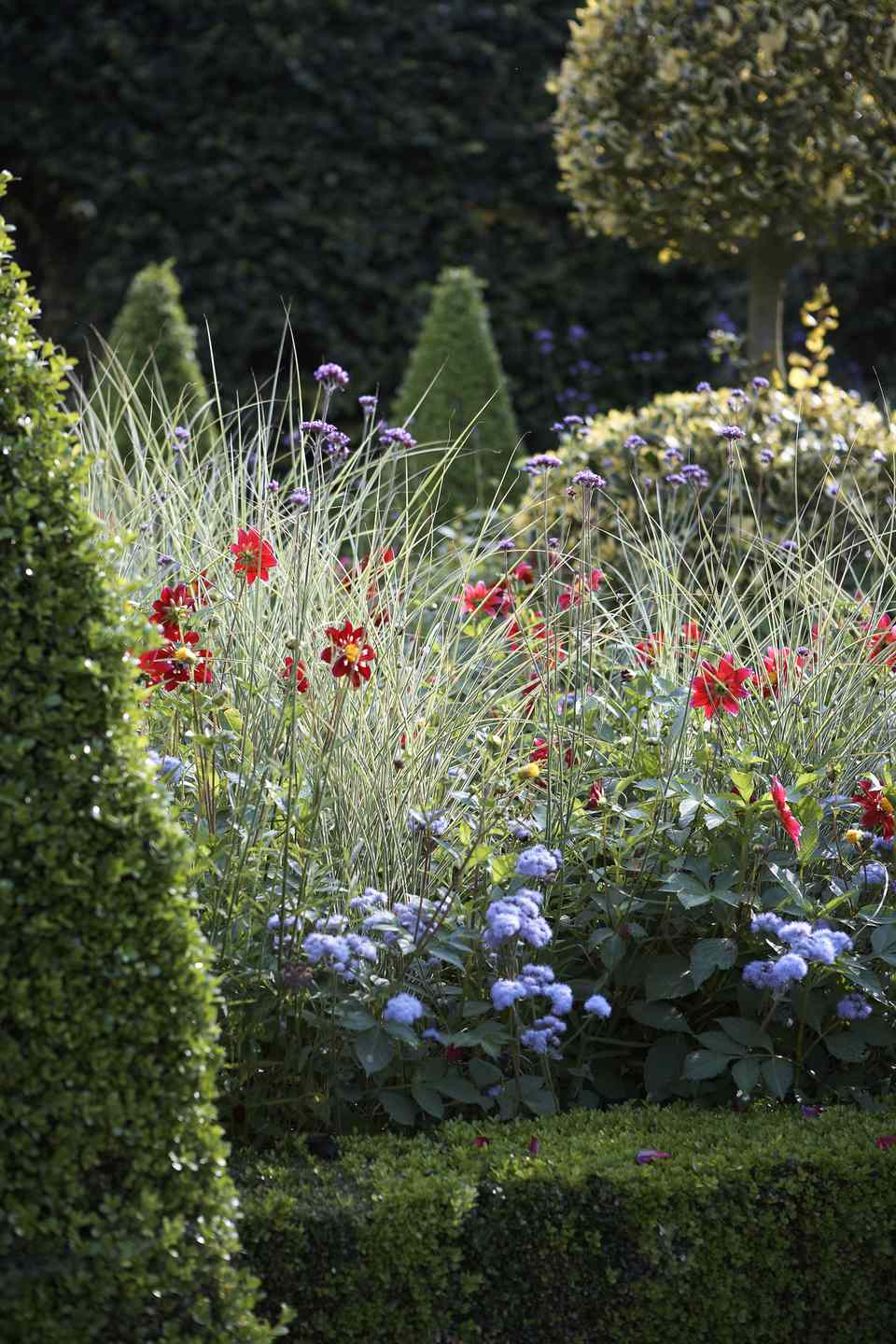 Privacy Landscaping Border Ideas