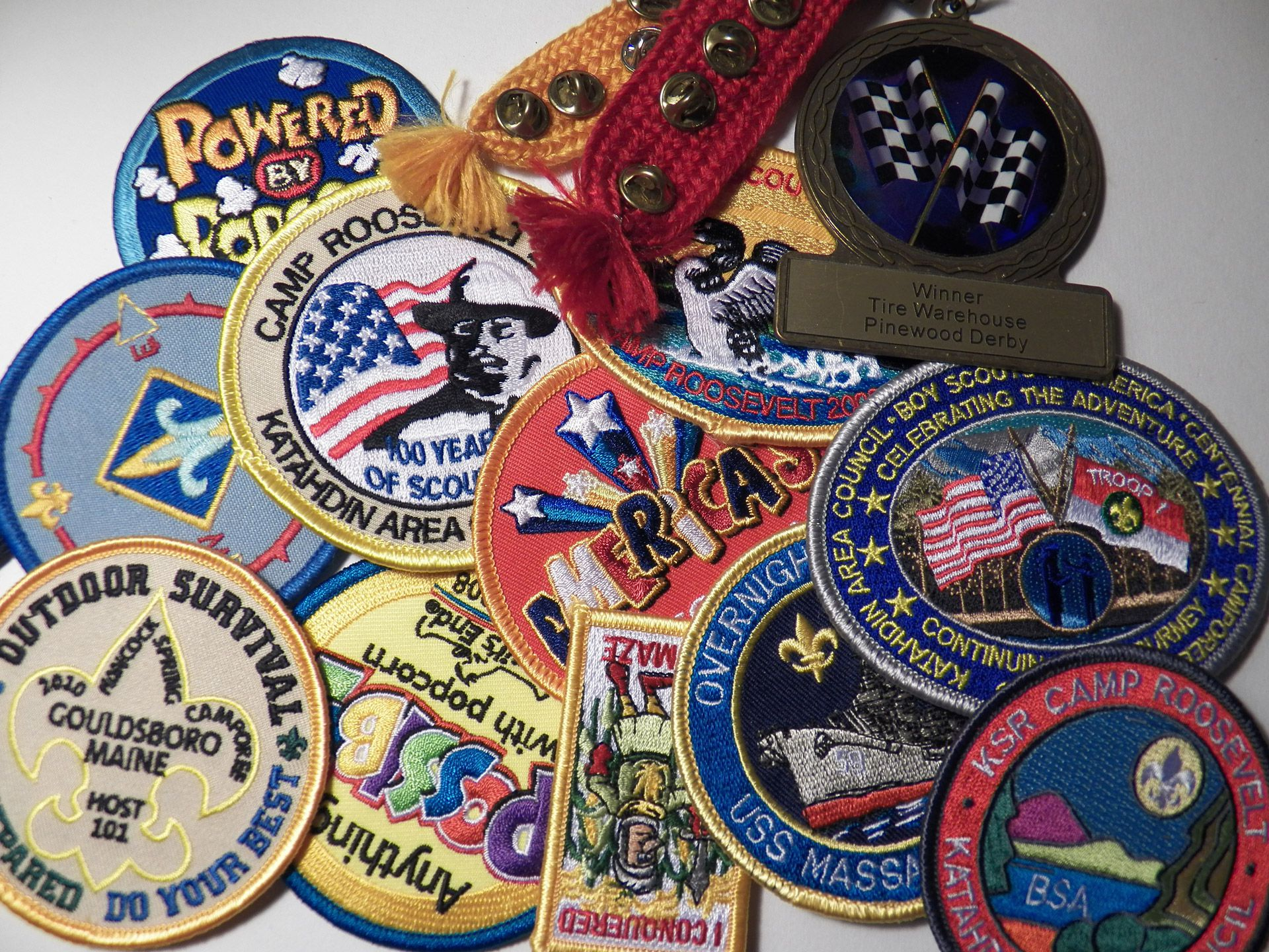 21 Merit Badges Required For Eagle Scouts