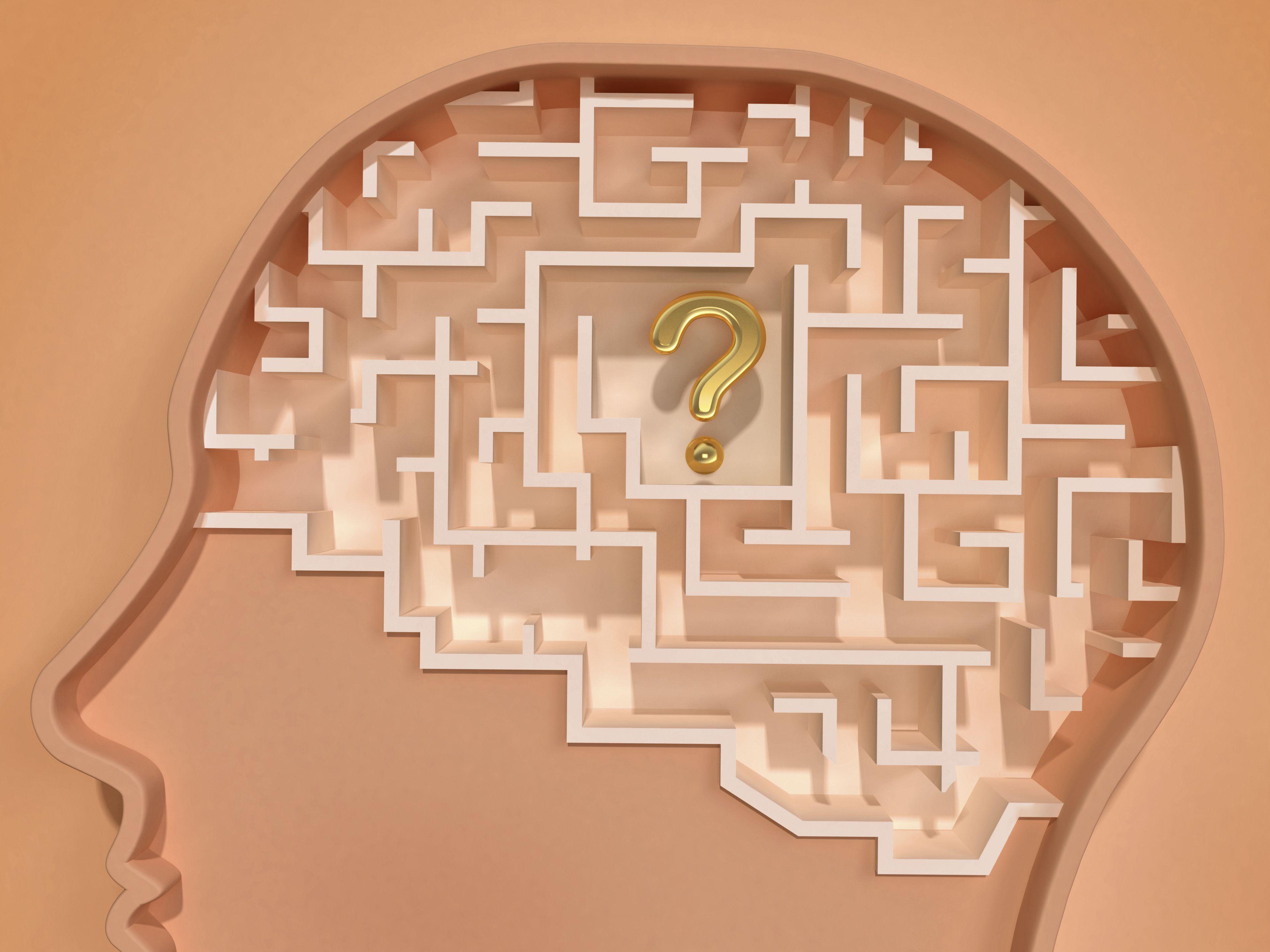 Memory Types Sensory Short Term Working Amp Long Term