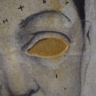 ossip-oog-1