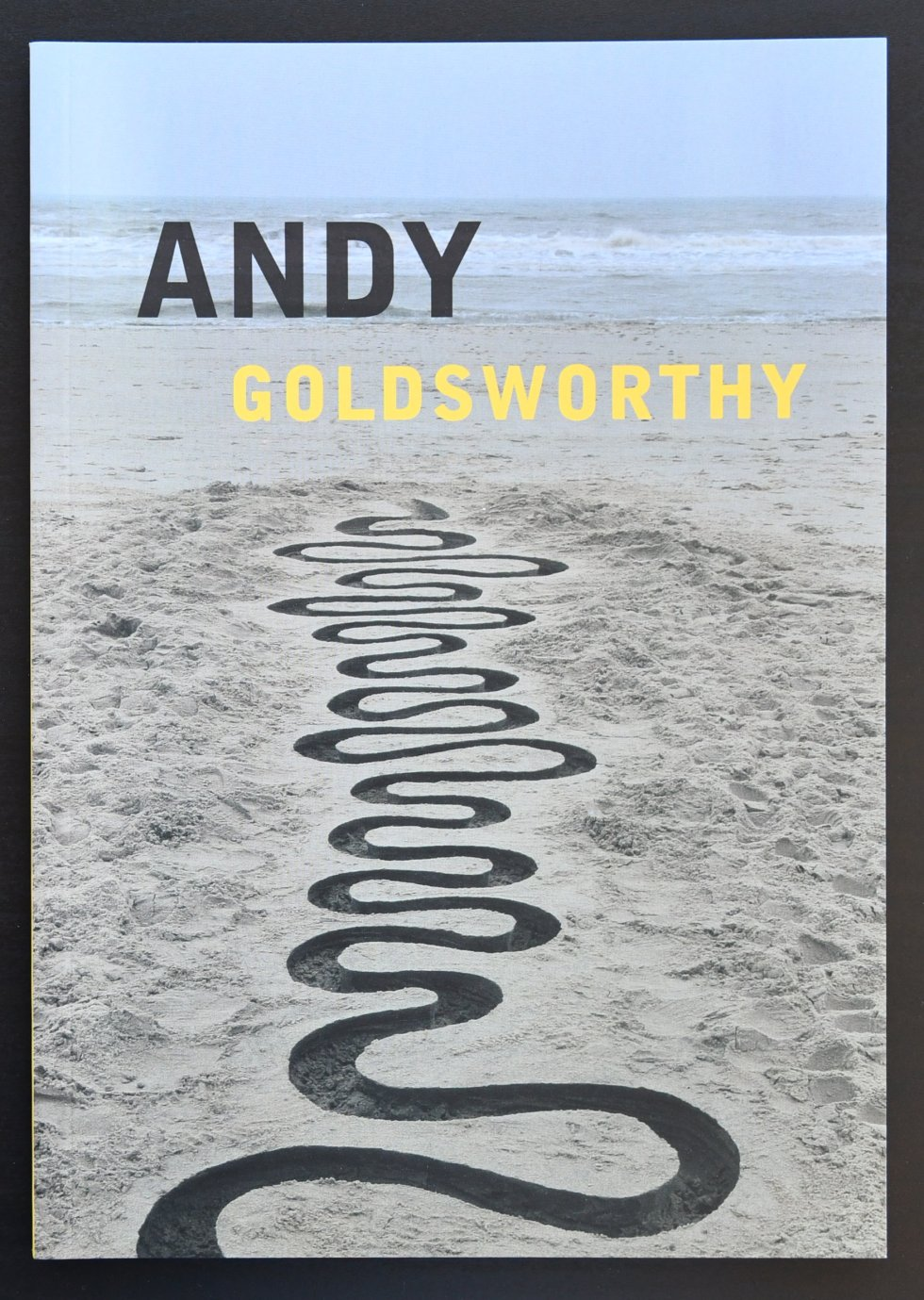 goldsworthy staats a