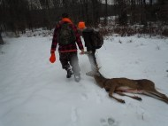 Rangers in Training dragging a buck