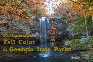 Fall Color at Georgia State Parks