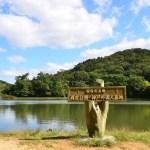 本日の動画と写真 2014.10.07 神戸 再度公園|Nikon D7000/SONY RX100M3/GoPro HERO3+