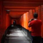外国人の口コミNO.1観光スポット 京都「伏見稲荷大社」へカメラを持って散策