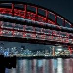 【神戸の夜景】ポートアイランド北公園から神戸の夜景