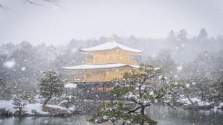【雪の京都】「嵐山」・「渡月橋」・「竹林の小径」・「金閣寺」・「清水寺」の雪化粧