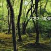 iPhone 7 Plusで試す「4K動画」京都 祇王寺の新緑