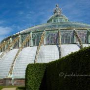 Königliche Gewächshäuser in Laken: