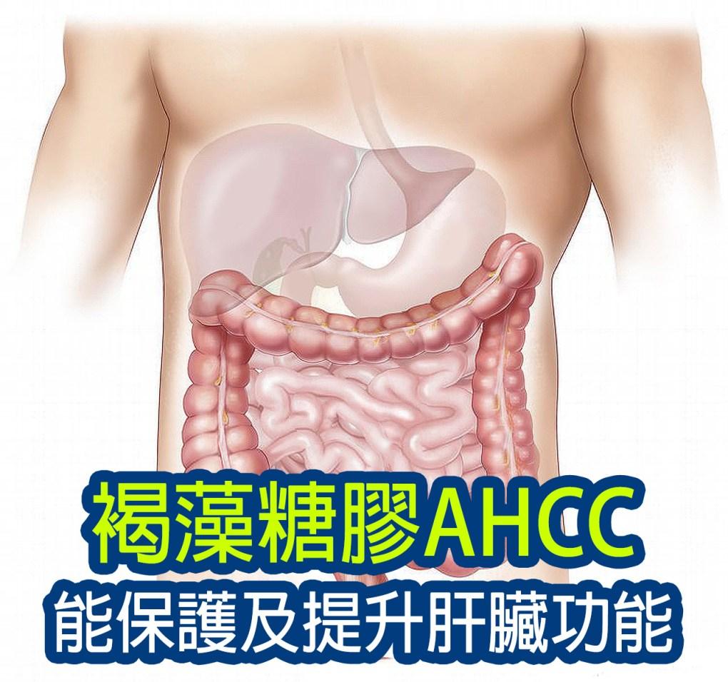 fucoidan-ahcc-protect-liver