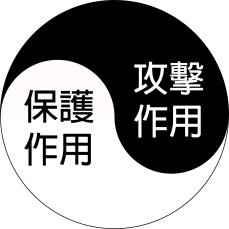 blog 04102017-02