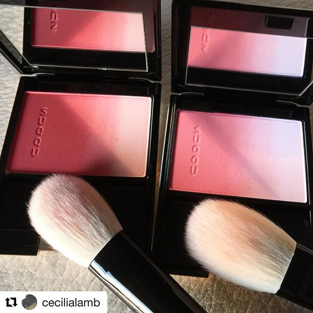 #Repost @cecilialamb (@get_repost)・・・Not sure how my friend managed to get me TWO - they've been so hard to come by!#myheroine #giftfromM #giftfromjapan #SUQQU #purecolorblush #07艷臯月 #艷臯月 #tsuyasatsuki #06春菫 #春菫 #Harusumire #HTF #takedabrush #fude #kumanofude #extrafinegoat #handmade #madeinjapan #japan #JBeauty
