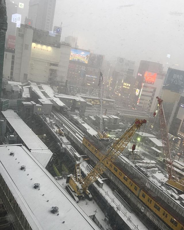 Snow in Tokyo now ... trains delayed ...