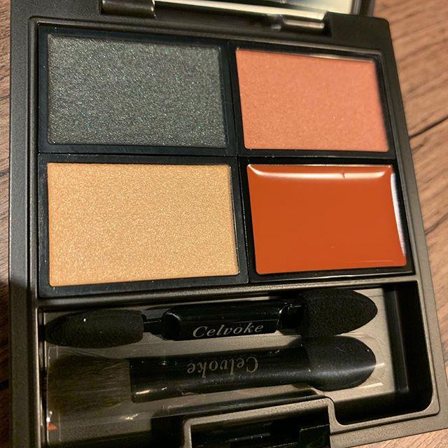 #celvoke eyeshadow palette 05 (7440 yen )
