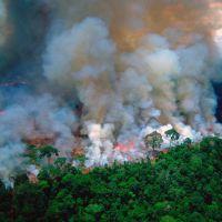 ¿Quién es responsable por los incendios en la Amazonia?