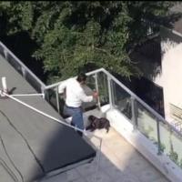 Arturo Nanita dice atacó a la perrita Trufa para defender a su hijo